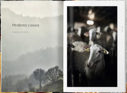 Ukázka z knihy Italská kuchařka - Riccardo Lucque a jeho příběh